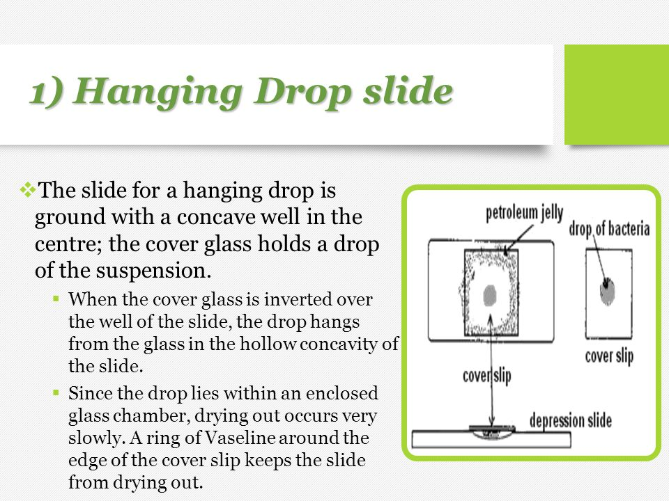 1) Hanging Drop slide The slide for a hanging drop is ground with a concave well in the centre; the cover glass holds a drop of the suspension.