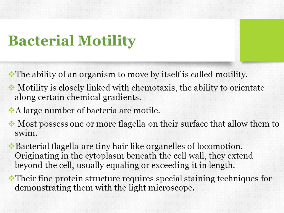 Bacterial Motility The ability of an organism to move by itself is called motility.