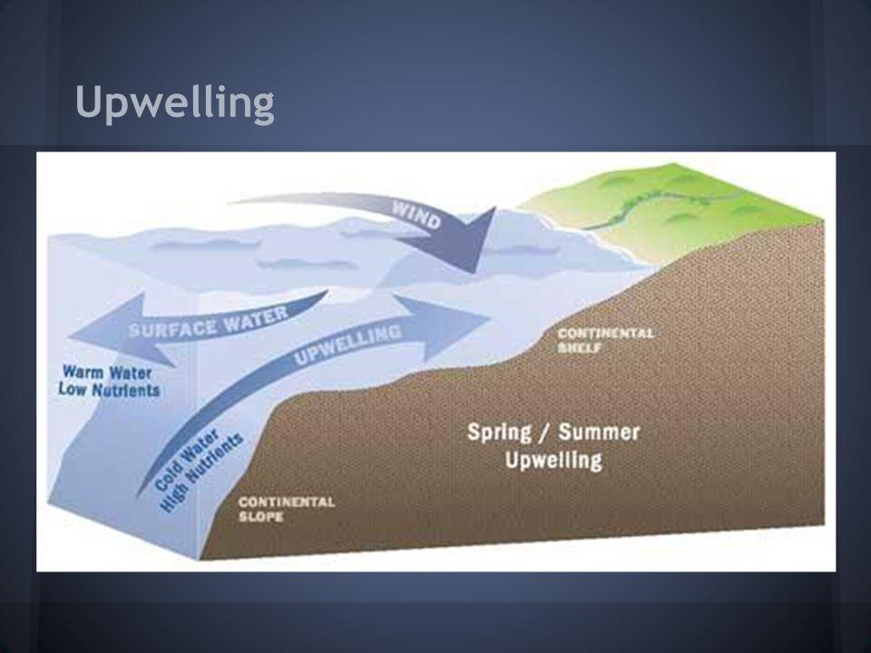 Upwelling
