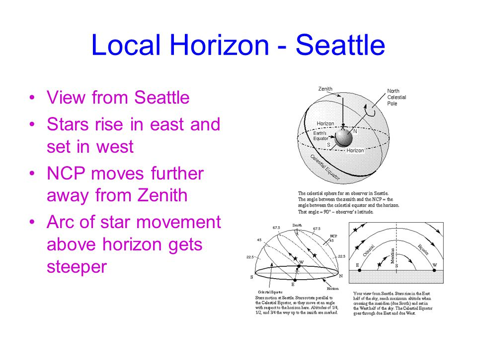 Local Horizon - Seattle