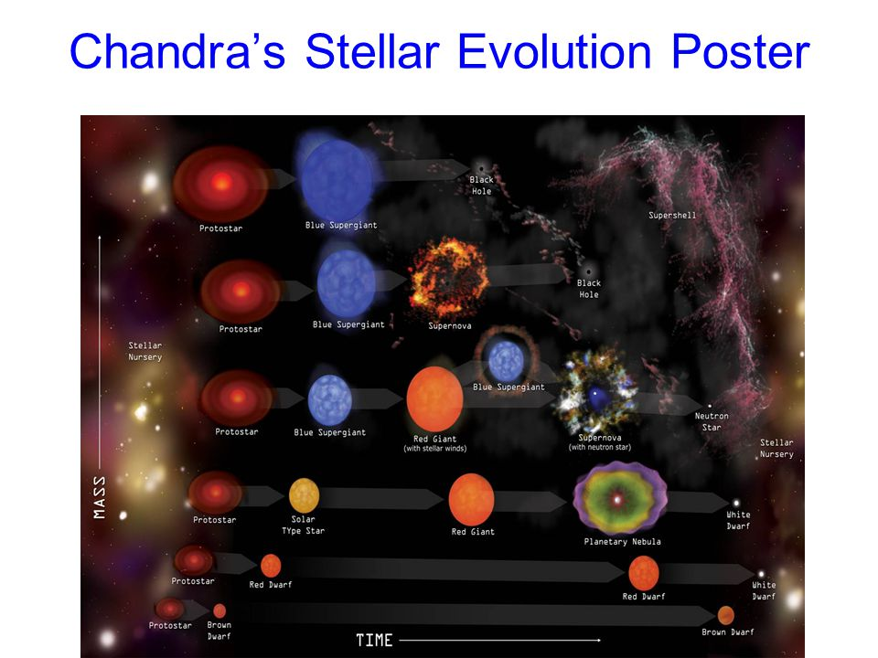 Chandra's Stellar Evolution Poster