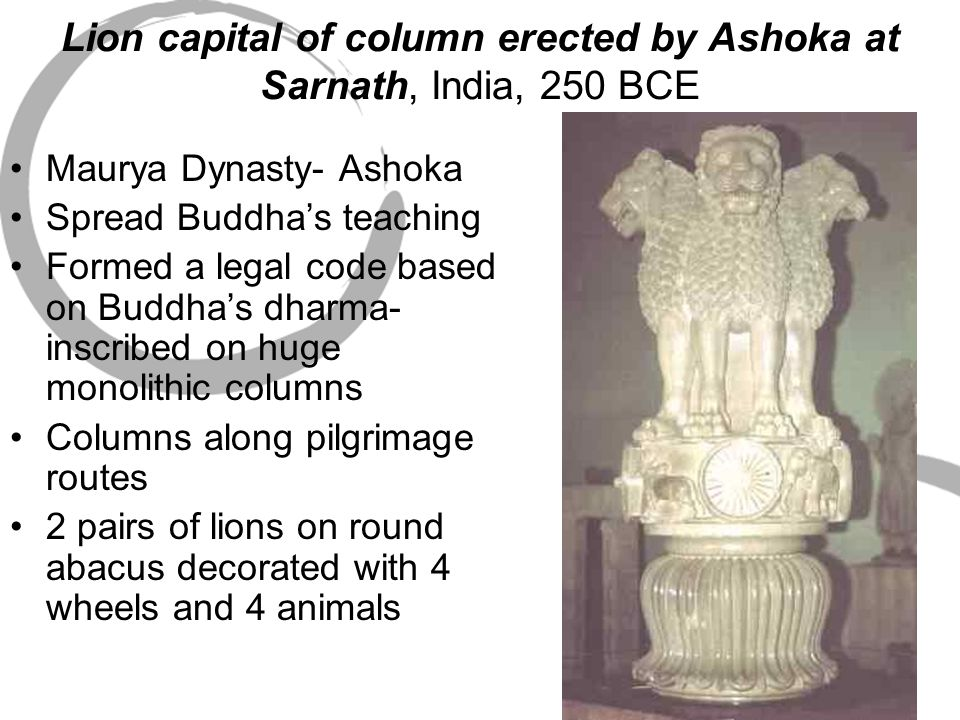 Lion capital of column erected by Ashoka at Sarnath, India, 250 BCE