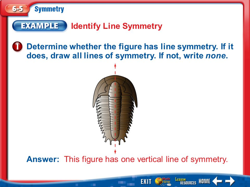 how to draw a line of symmetry