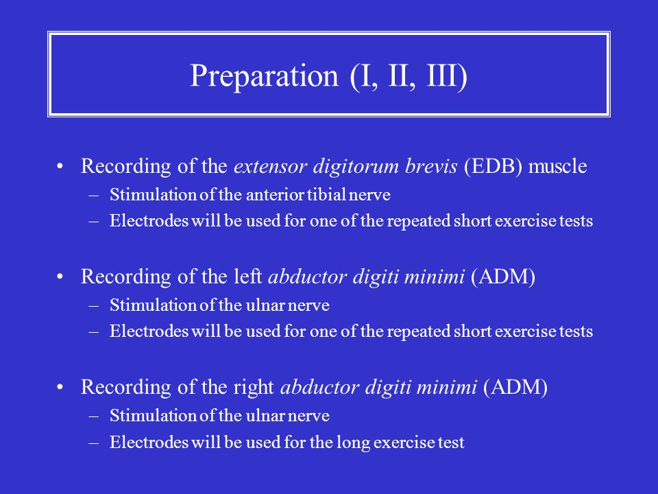 Preparation (I, II, III) Recording of the extensor digitorum brevis (EDB) muscle. Stimulation of the anterior tibial nerve.