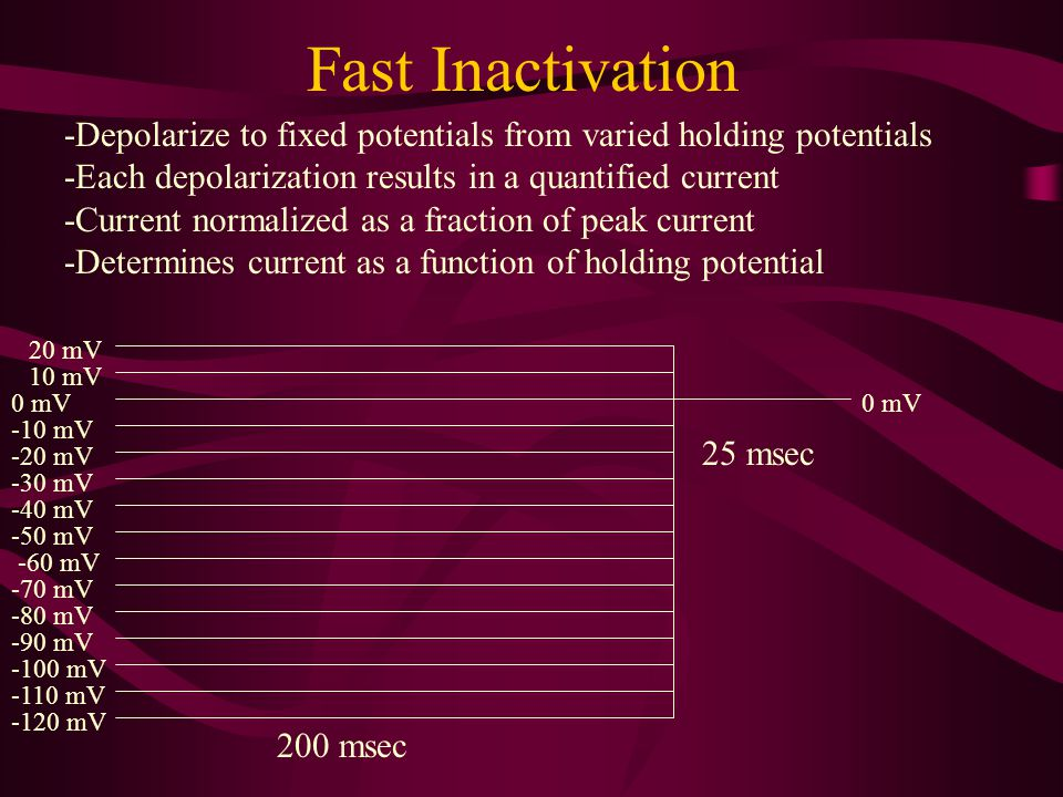 Fast Inactivation -Depolarize to fixed potentials from varied holding potentials. -Each depolarization results in a quantified current.