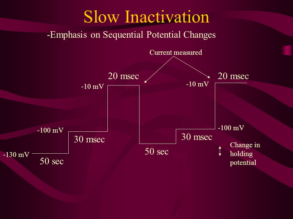 Slow Inactivation -Emphasis on Sequential Potential Changes 20 msec