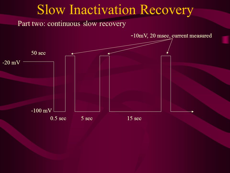 Slow Inactivation Recovery