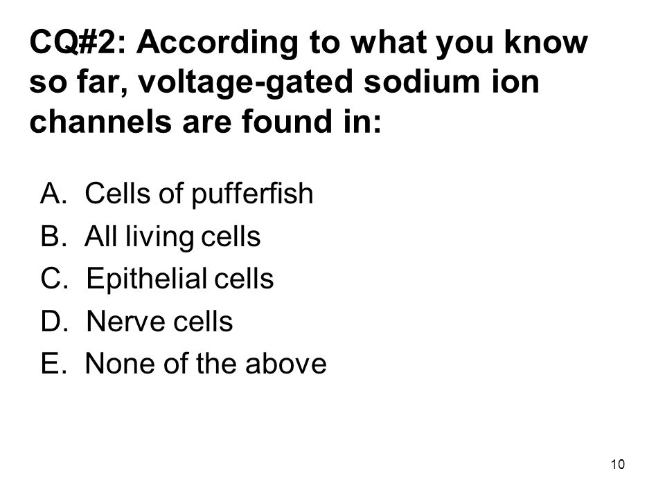 CQ#2: According to what you know so far, voltage-gated sodium ion channels are found in: