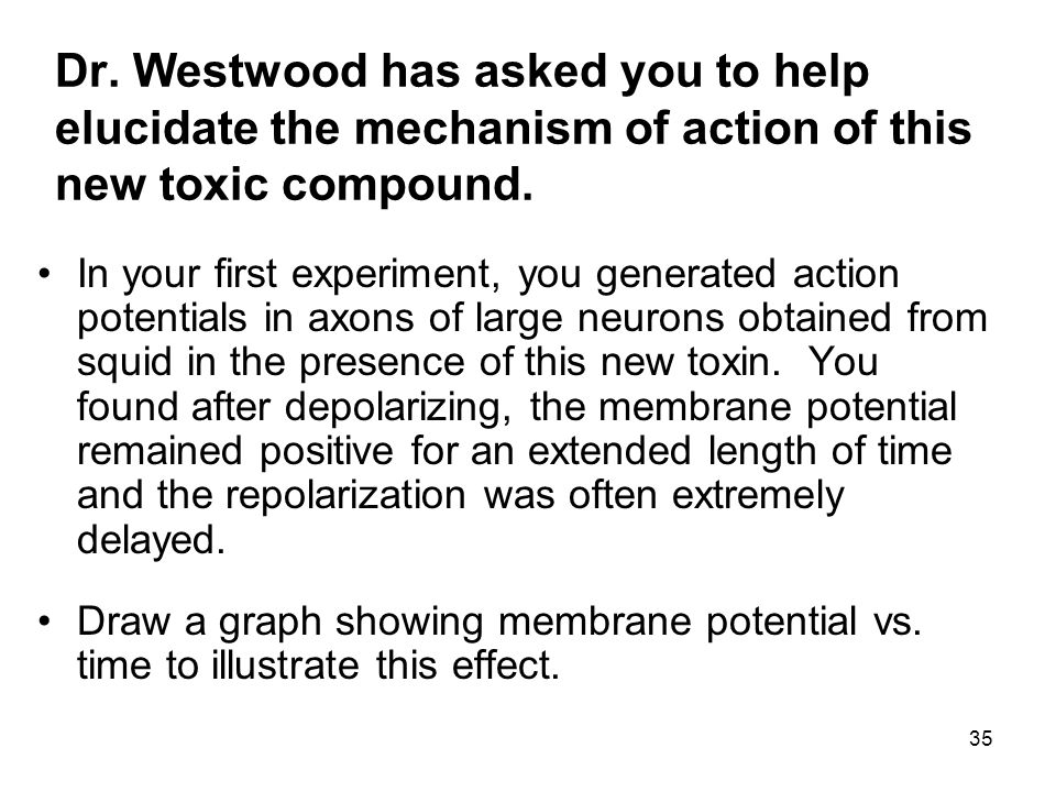 Dr. Westwood has asked you to help elucidate the mechanism of action of this new toxic compound.