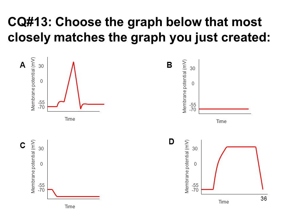 CQ#13: Choose the graph below that most closely matches the graph you just created: