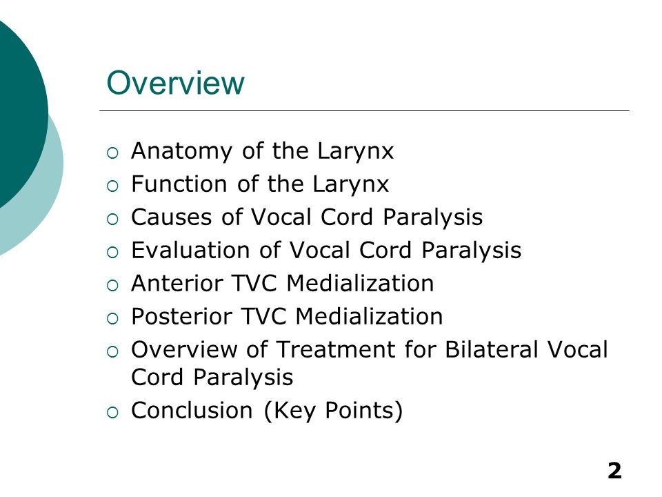 Overview Anatomy of the Larynx Function of the Larynx