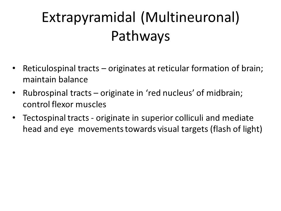 Extrapyramidal (Multineuronal) Pathways