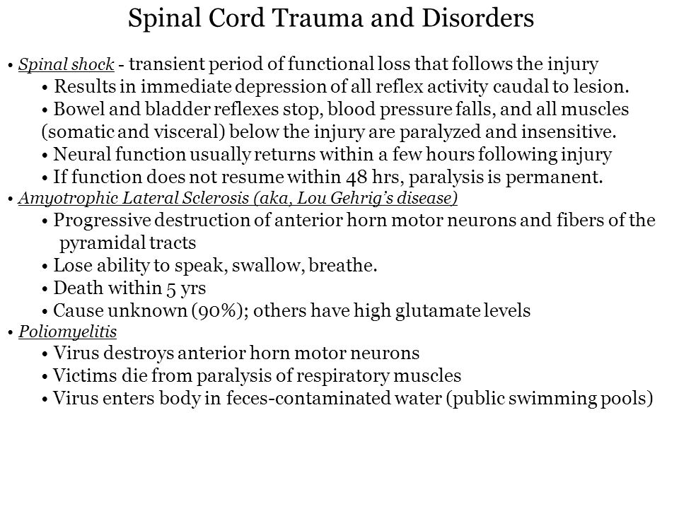 Spinal Cord Trauma and Disorders
