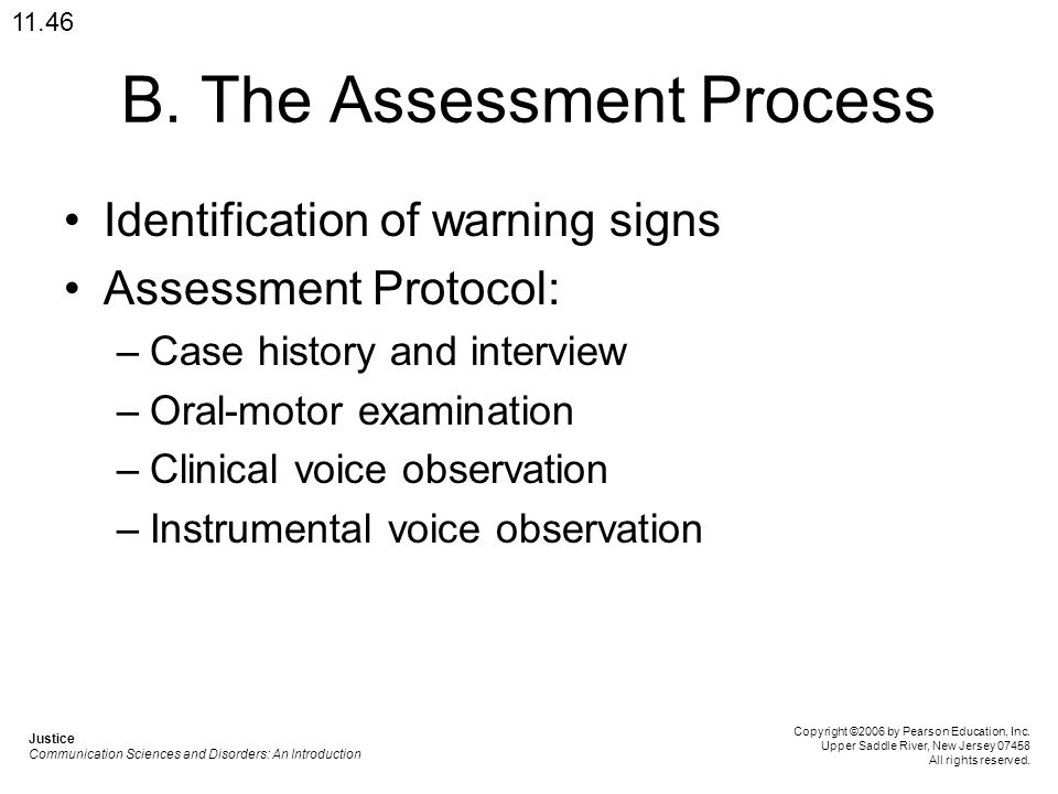 B. The Assessment Process