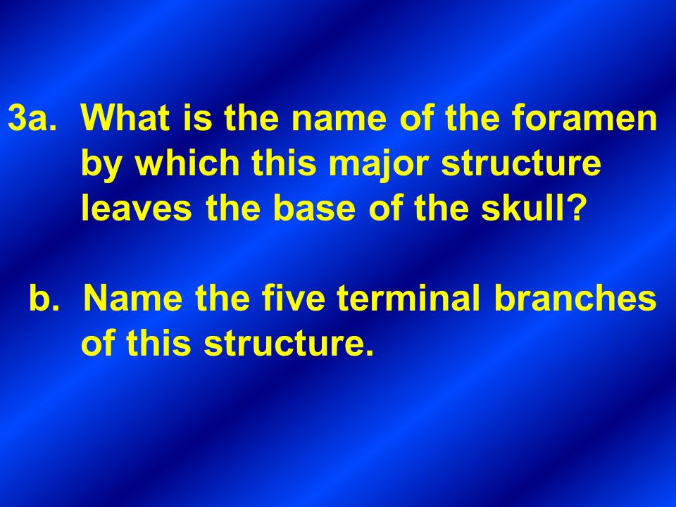 3a. What is the name of the foramen by which this major structure