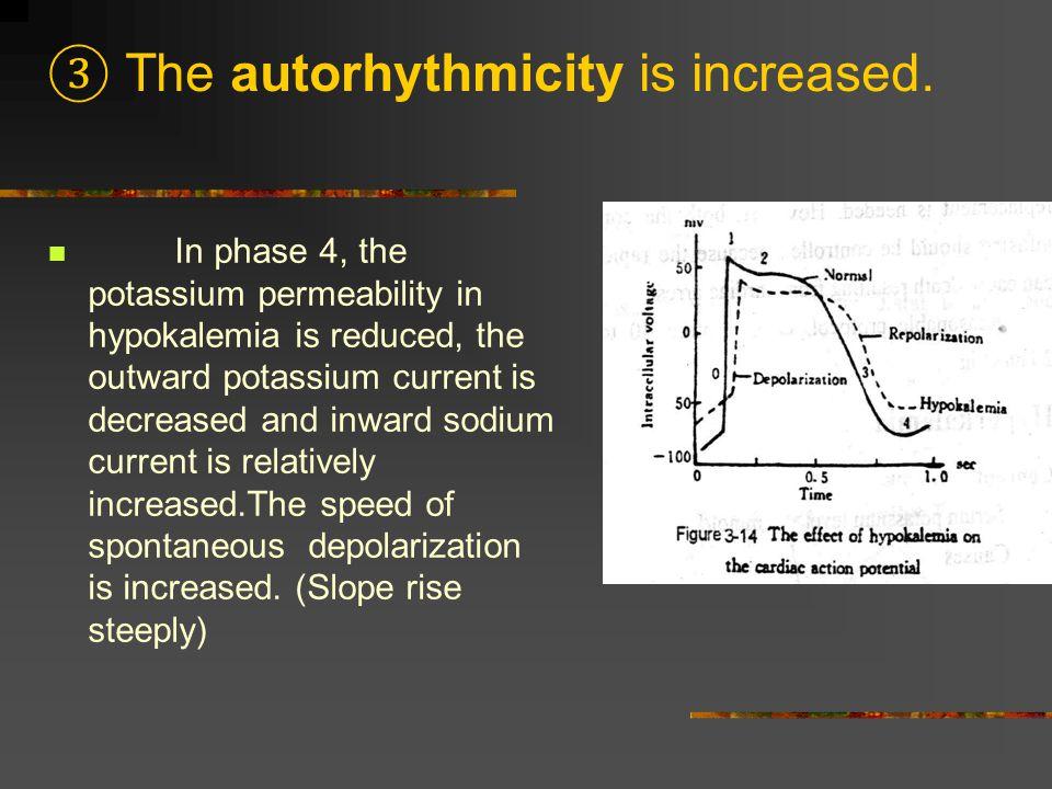 ③ The autorhythmicity is increased.