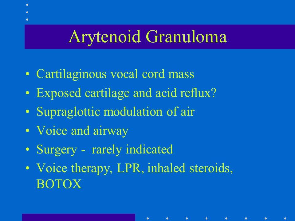 Arytenoid Granuloma Cartilaginous vocal cord mass