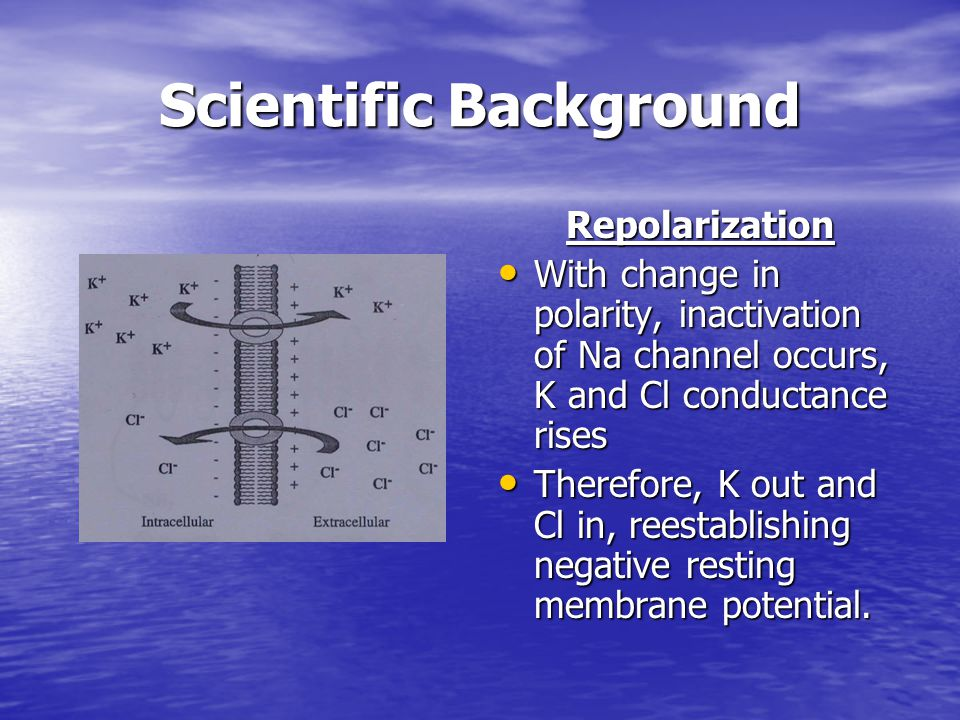 Scientific Background