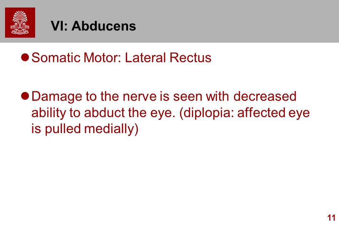 VI: Abducens Somatic Motor: Lateral Rectus.