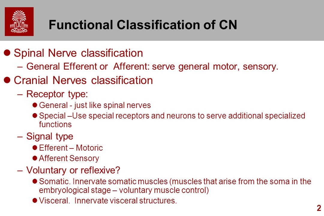 Functional Classification of CN