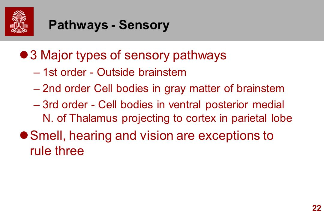 3 Major types of sensory pathways