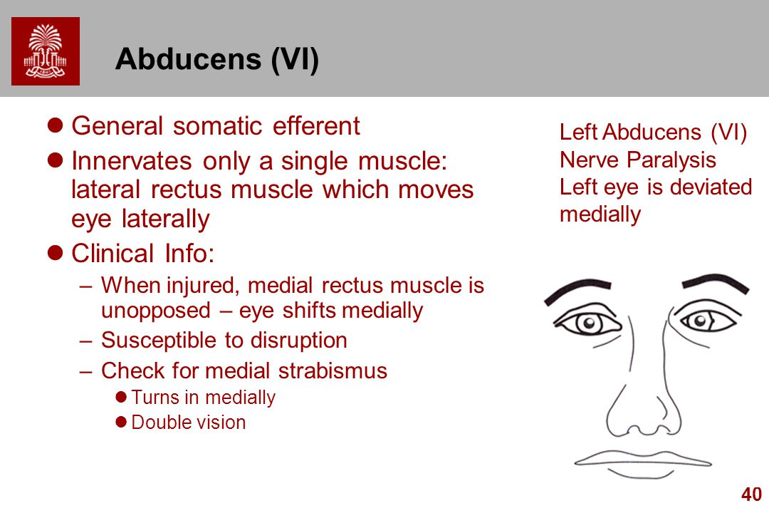 Abducens (VI) General somatic efferent