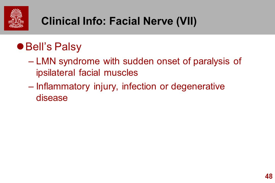 Clinical Info: Facial Nerve (VII)