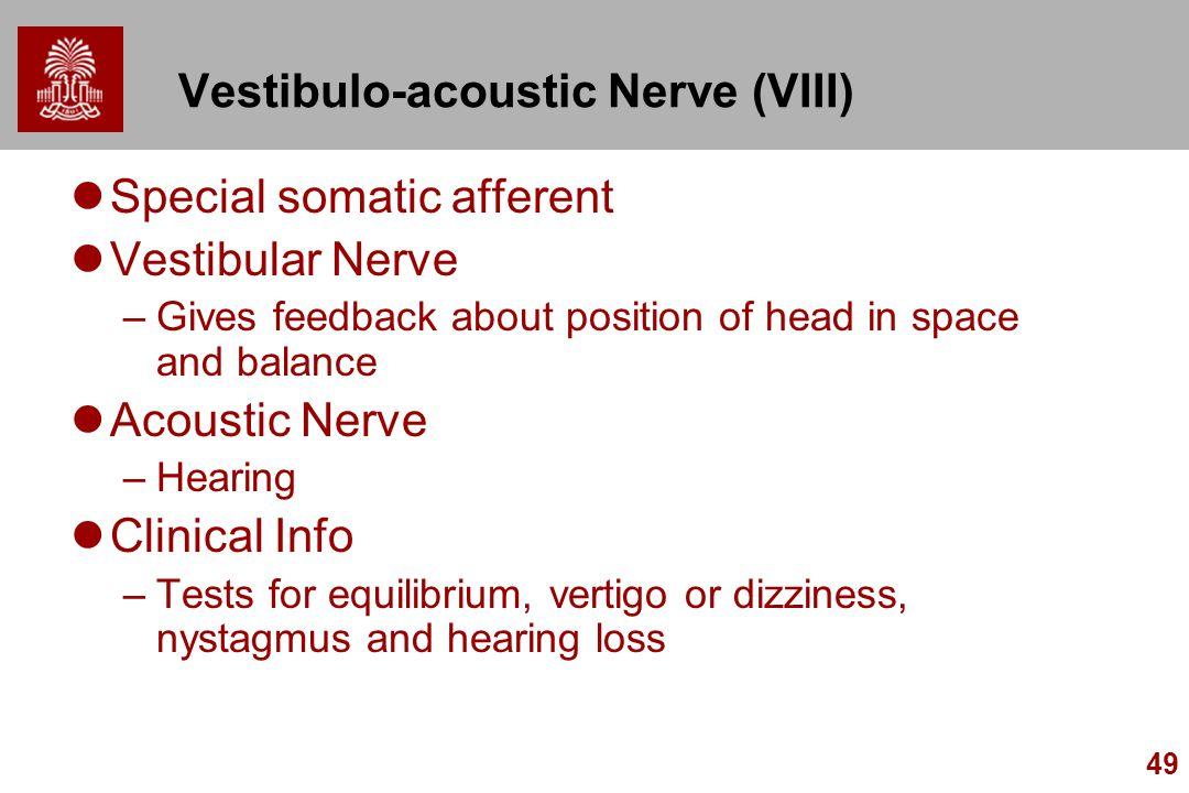 Vestibulo-acoustic Nerve (VIII)