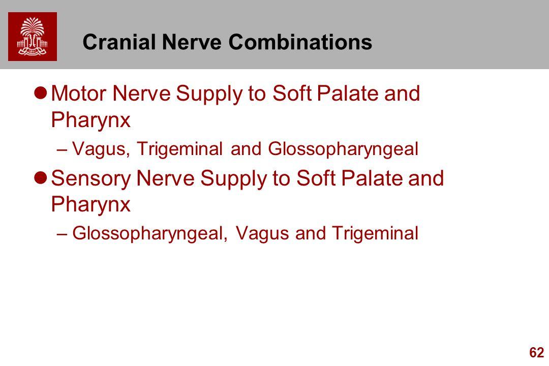 Cranial Nerve Combinations