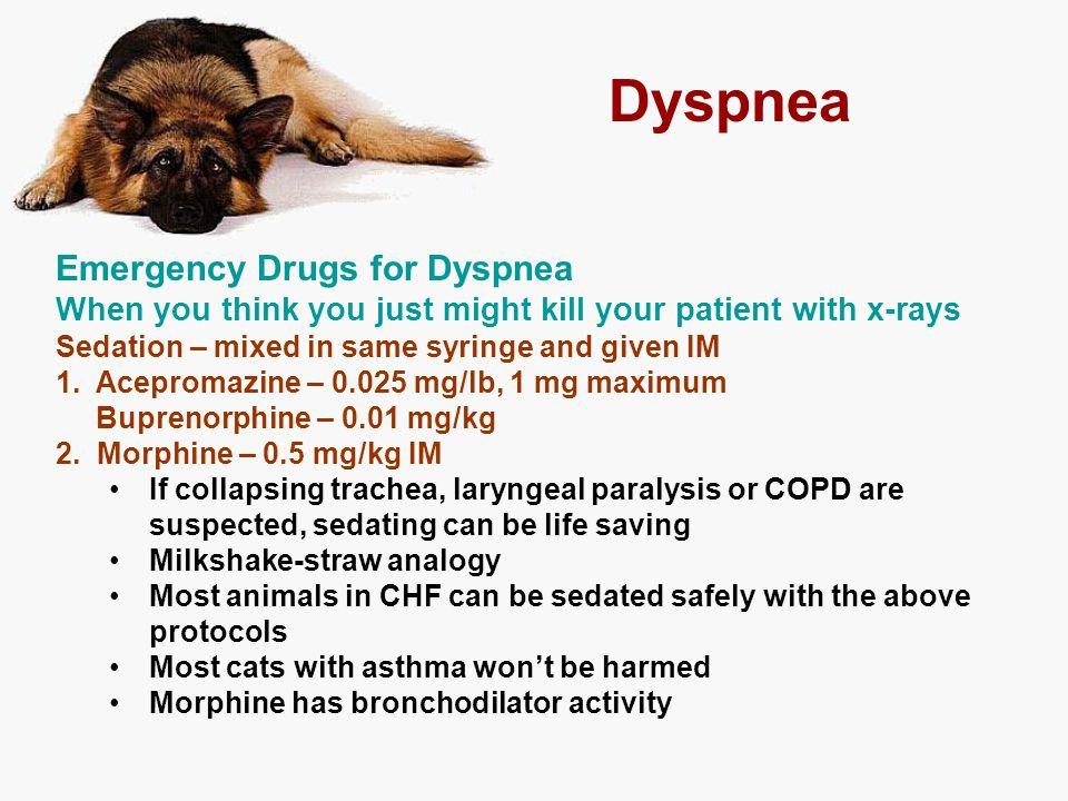 Dyspnea Emergency Drugs for Dyspnea