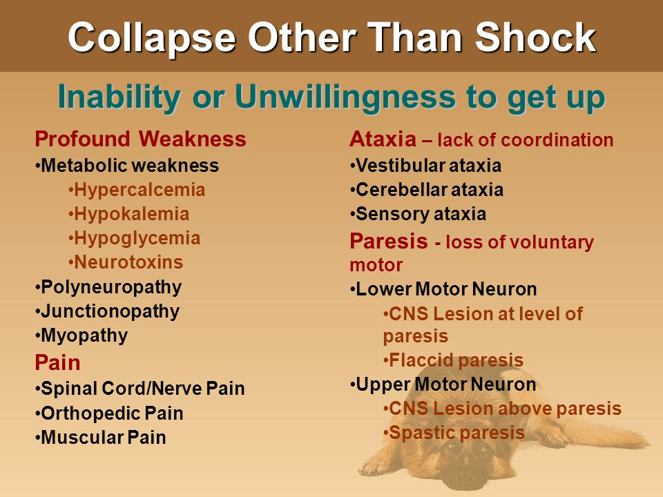 Collapse Other Than Shock