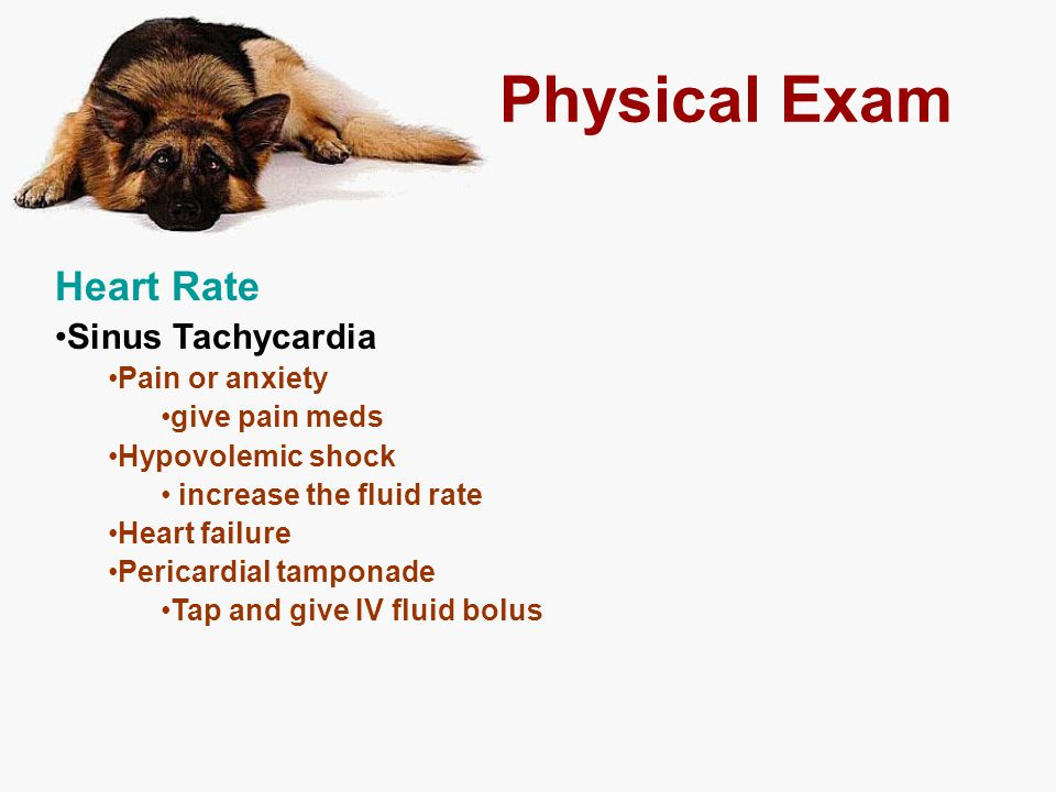 Physical Exam Heart Rate Sinus Tachycardia Pain or anxiety