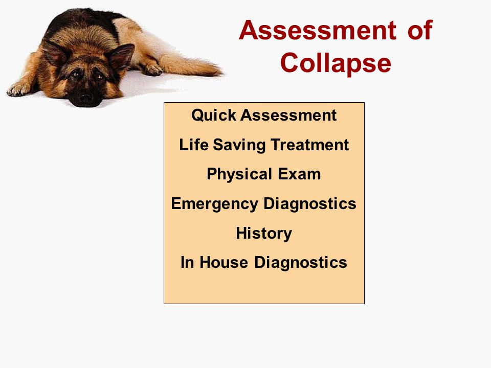 Assessment of Collapse