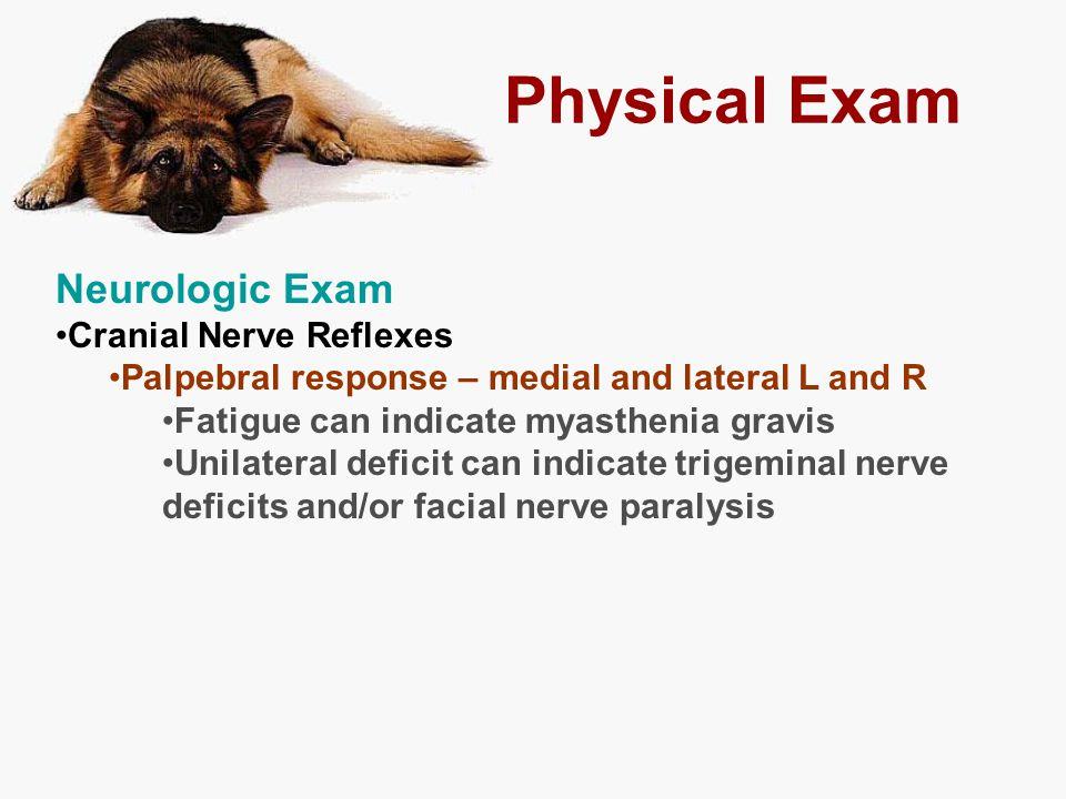 Physical Exam Neurologic Exam Cranial Nerve Reflexes