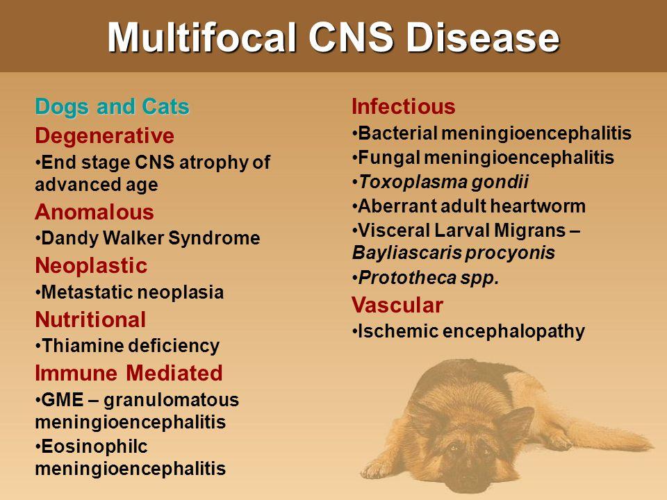 Multifocal CNS Disease