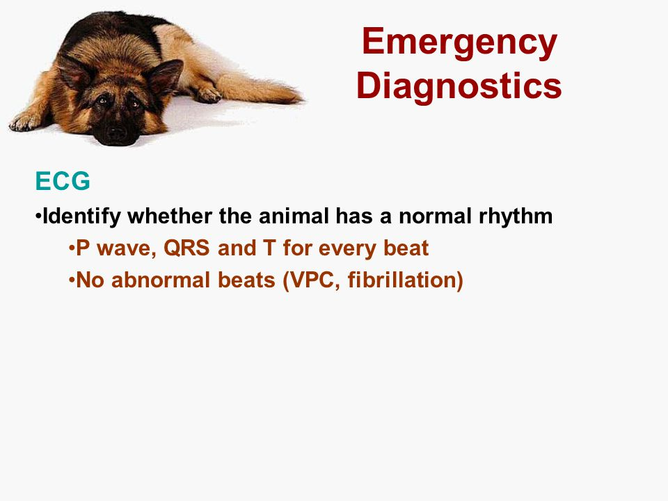 Emergency Diagnostics