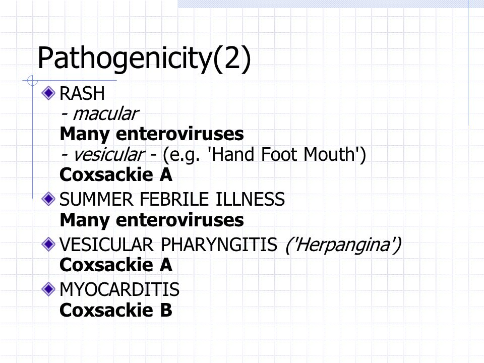 Pathogenicity(2) RASH - macular Many enteroviruses - vesicular - (e.g. Hand Foot Mouth ) Coxsackie A.