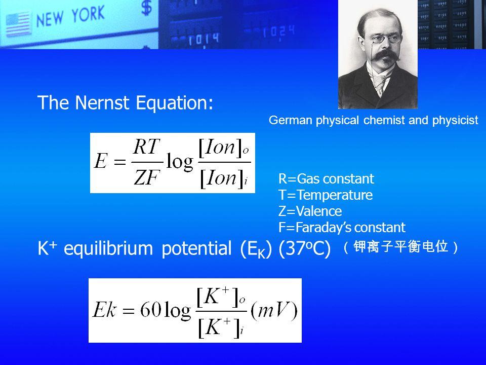 K+ equilibrium potential (EK) (37oC)