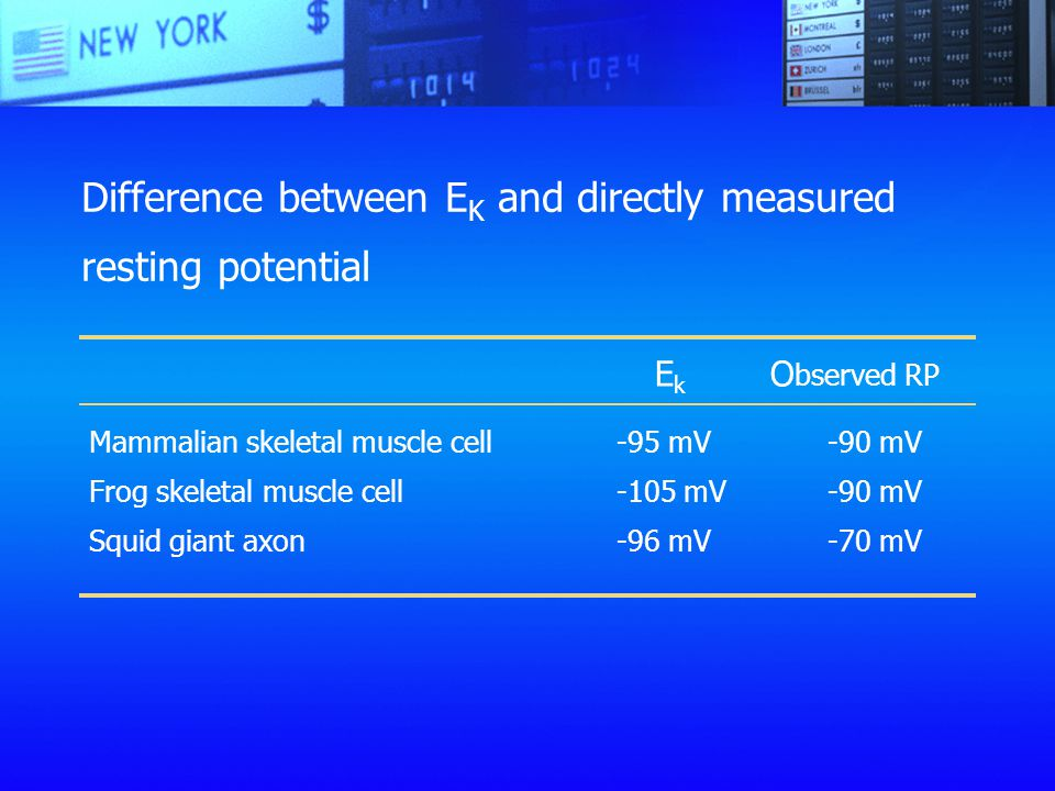 Difference between EK and directly measured resting potential