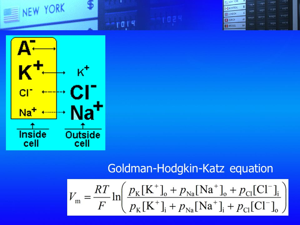 Goldman-Hodgkin-Katz equation