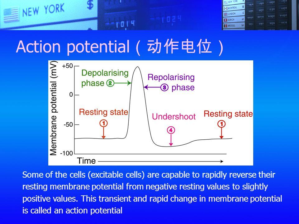 Action potential(动作电位)
