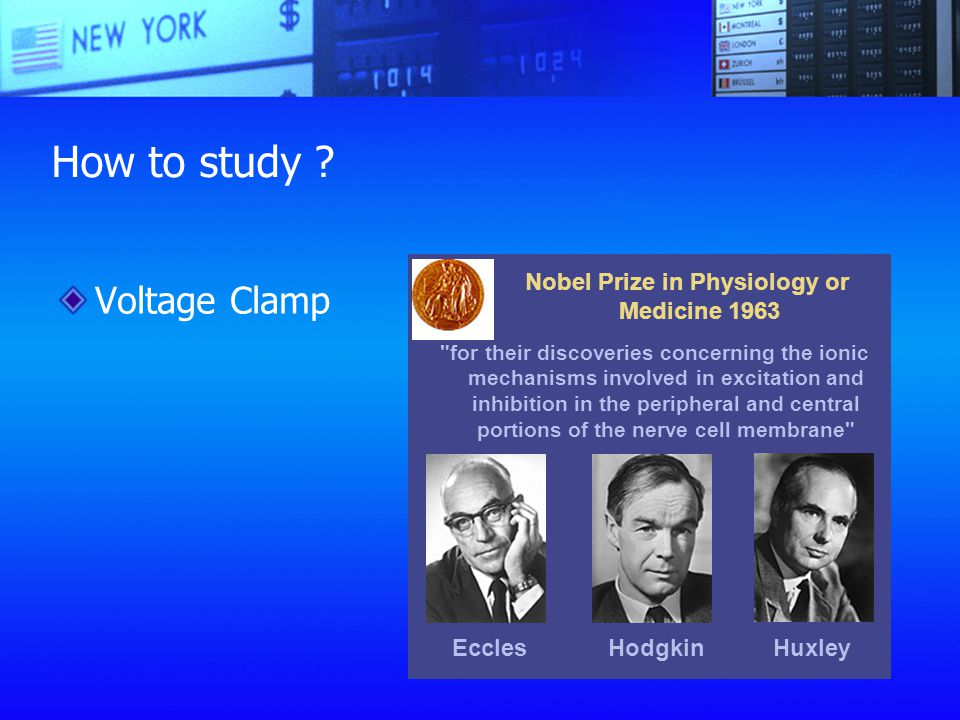 Nobel Prize in Physiology or Medicine 1963