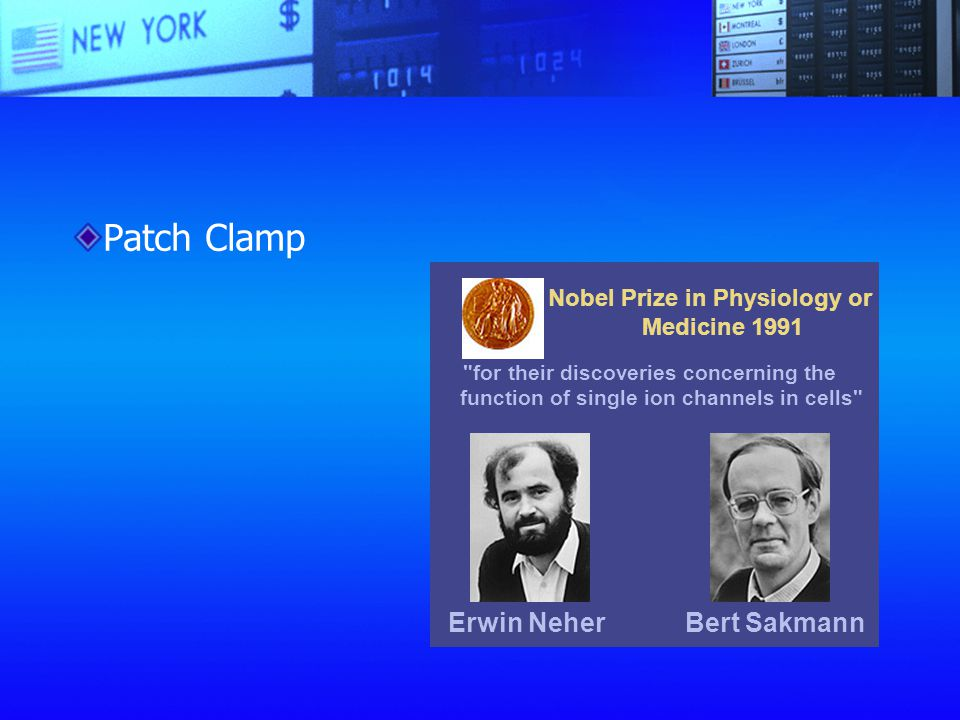 Nobel Prize in Physiology or Medicine 1991