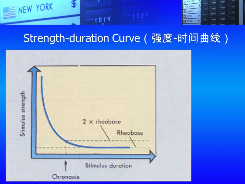 Strength-duration Curve(强度-时间曲线)