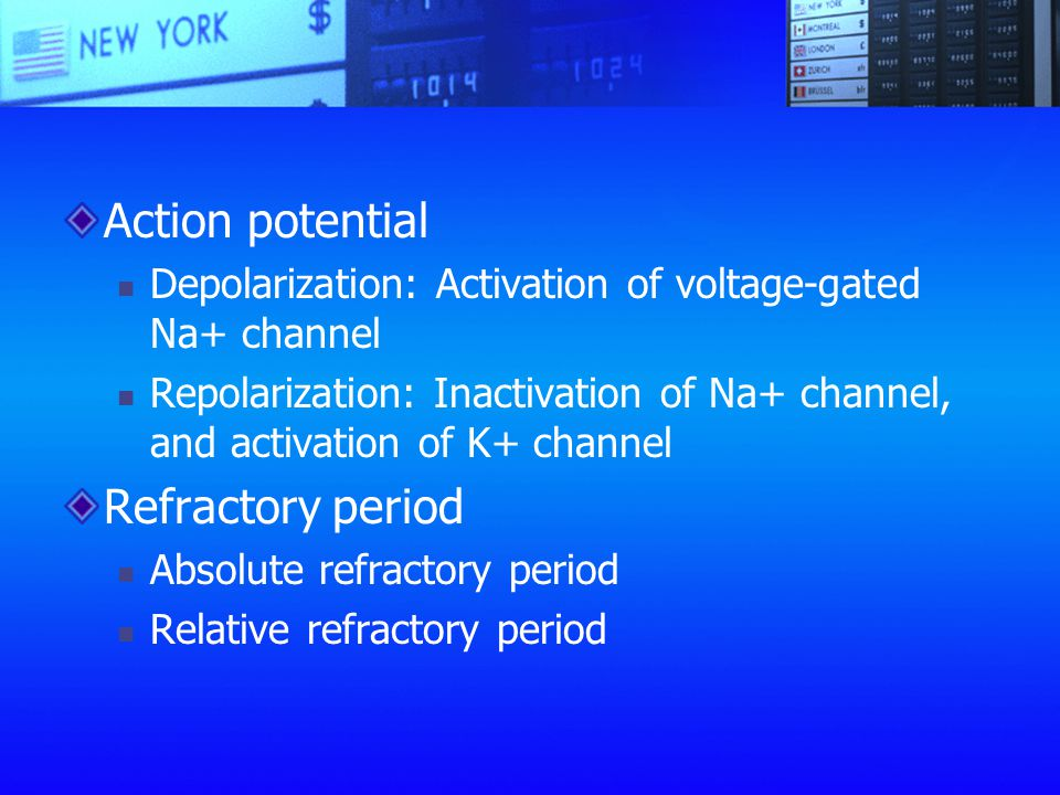 Action potential Refractory period