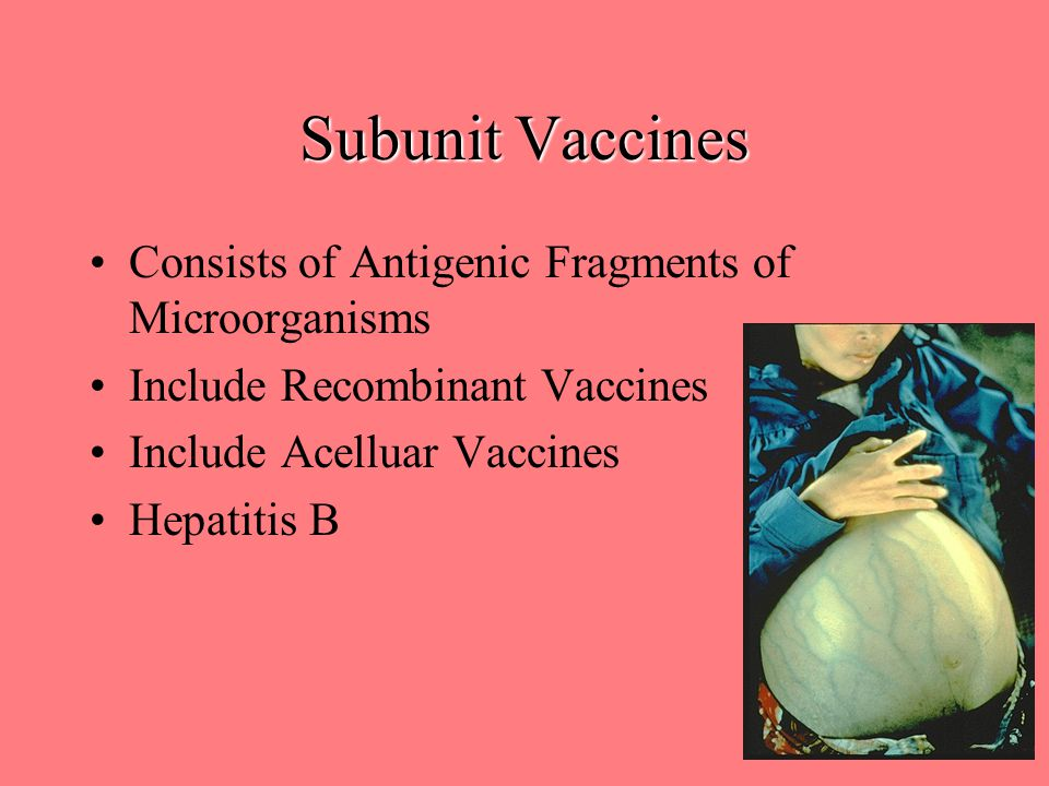 Subunit Vaccines Consists of Antigenic Fragments of Microorganisms