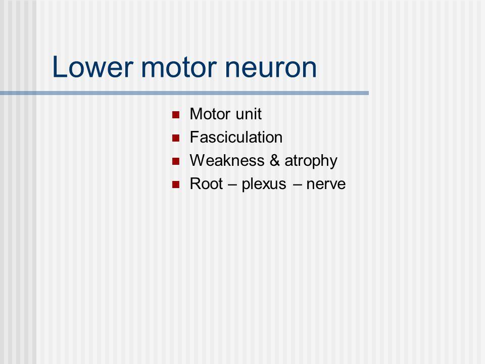 Lower motor neuron Motor unit Fasciculation Weakness & atrophy