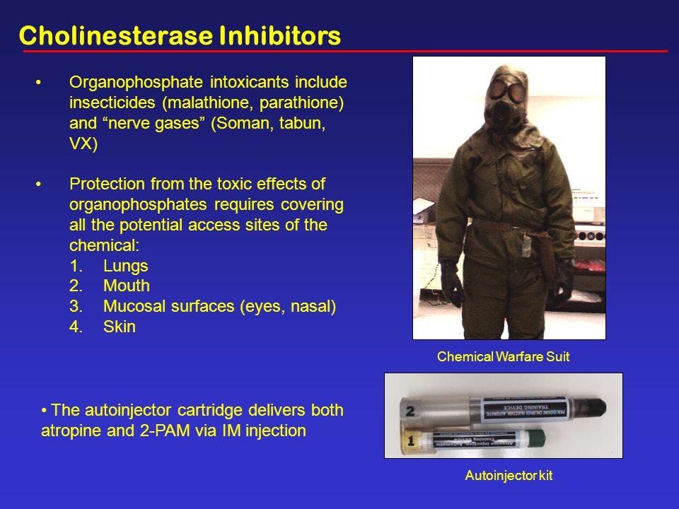 Cholinesterase Inhibitors