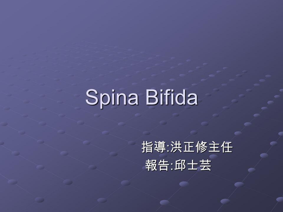 Spina Bifida 指導:洪正修主任 報告:邱士芸