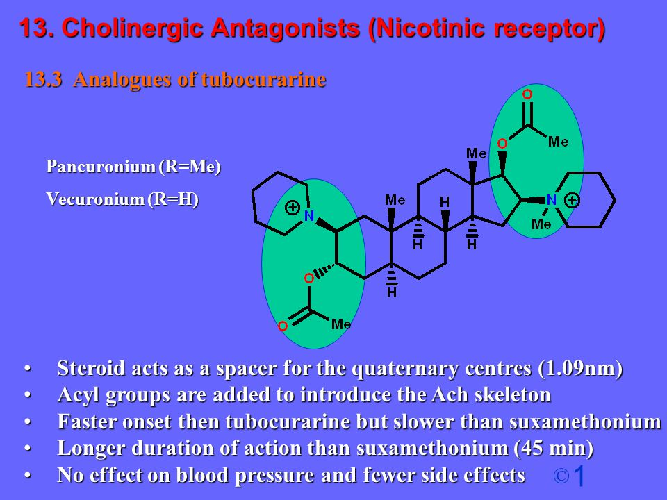 13. Cholinergic Antagonists (Nicotinic receptor)